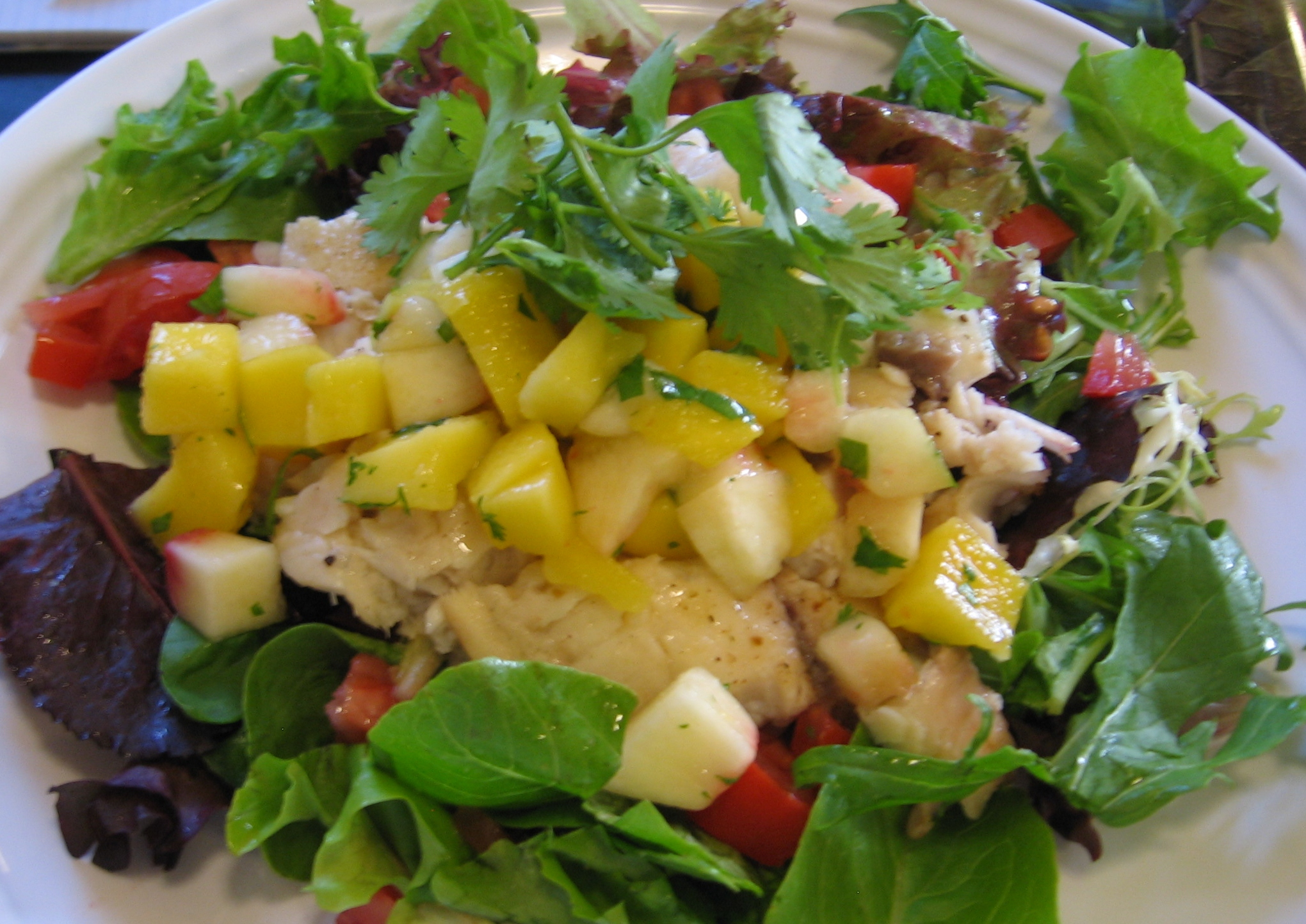 Grilled tilapia salad w a mango peach salsa amy 39 s blog for Fish and salad